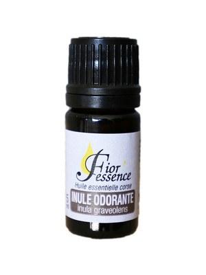 Huile essentielle inule odorante Bio